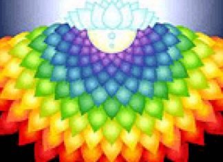 Sahastrasar Chakra – Crown Chakra