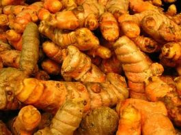 "Turmeric: ""The Golden Goddess"""
